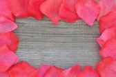 在带纹理的木材上的玫瑰花瓣。特写. — 图库照片