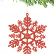 Christmas decoration snowflake on the tree. On a white backgroun — Stock Photo