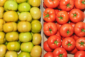 The contrast of red and green tomatoes close up. — Stock Photo