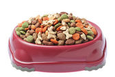 Plate of food for cats and dogs. On a white background. — Stock Photo