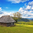 Abandoned wooden house in the mountains and forest. In the Carpa — Stock Photo
