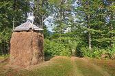 Stóg siana żółty dojrzałe na skraju lasu. w karp — Zdjęcie stockowe