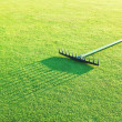 Stock Photo: Rake on the green grass for golf.
