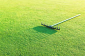 Rake on the green grass for golf. — Stock Photo