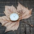 Pocket watch the autumn leaves. On a wooden texture. — Stock Photo #20001365