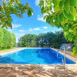 Stock Photo: Outdoor swimming pool with blue water near garden.