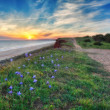 A beautiful sunset with sea and sky blue colors. Near the road. — Stock Photo