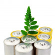 Foto Stock: Alkaline batteries and green leaf symbol of cleenergy.