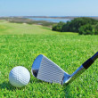 Stock Photo: Golf accessories on background of green golf course.