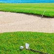 Photo: Golf stick on grass field and ball on background of the