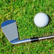 Golf stick ball closeup on grass. — Foto Stock #24692743