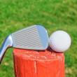 Golf stick upside down on a wooden ball pedestal on the grass. C — Stock Photo #24692781