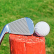 Golf stick upside down on wooden ball pedestal on grass. C — Foto Stock #24692781