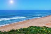 Beautiful coast beach for a walk. Holiday at the sea. — Stock Photo