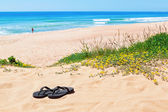 Flip-flops on the background of the beautiful beach and the sea. — Stock Photo
