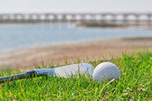 Golf stick and ball on grass with a background of nature. Close- — Stock Photo