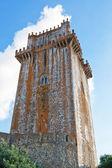 Ancien château tour dans la villa de beja au portugal. été. — Photo