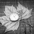 Old pocket watch on autumn leaf. symbol of nostalgia. — Stock Photo #28247795