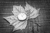 Old pocket watch on the autumn leaf. The symbol of nostalgia. — Stock Photo
