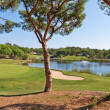 Beautiful park for a game of golf. With the lake and fountain. — Foto Stock #33306801