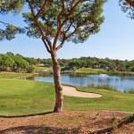 ゴルフのゲームのための美しい公園。湖と噴水 — ストック写真