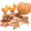 Autumn composition of beautiful gifts of nature. — Stock Photo