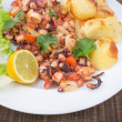 Delicacy dish of grilled octopus, marine products. — Stock Photo
