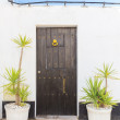 Stock Photo: Vintage old doors and vases for plants. Traditionally Portuguese.