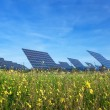 Station solar panels on a beautiful green lawn. For the generation of electricity. — Stock Photo #41521139
