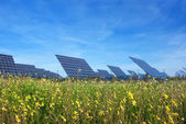 Station solar panels on a beautiful green lawn. For the generation of electricity. — Foto de Stock