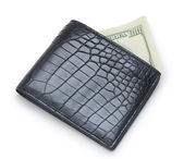 Leather wallet with money isolated on white background — Stock Photo