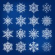 Beautiful snowflakes vector set — Stock Vector