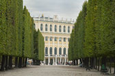 Schonbrunn Palace in Vienna — Stock Photo