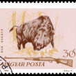 Hunting stamp from Hungary - circa 1964 — Stock Photo