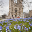 Cathedral of St. Michael and St. Gudula — Stock Photo #36069303