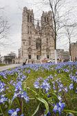 圣迈克尔和圣古都勒主教座大教堂 — 图库照片