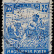 HUNGARY - CIRCA 1916: A stamp printed in Hungary shows Harvestin — Stock Photo