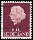 NETHERLANDS - CIRCA 1953: A stamp printed in Netherlands shows p — Stock fotografie