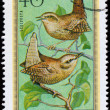 HUNGARY - CIRCA 1973: Postage stamp printed in Hungary showing W — Stock Photo #39717107