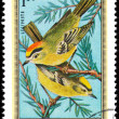 HUNGARY - CIRCA 1973: Postage stamp printed in Hungary showing G — Stock Photo #39718021