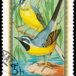 HUNGARY - CIRCA 1973: Postage stamp printed in Hungary showing W — Stock Photo #39718897