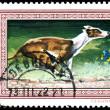 Stock Photo: HUNGARY - CIRCA 1972: Postage stamp printed in Hungary showing G