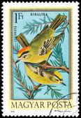 Hongrie - vers 1973 : timbre imprimé en hongrie montrant g — Photo