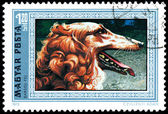 HUNGARY - CIRCA 1972: Postage stamp printed in Hungary showing G — Stock Photo