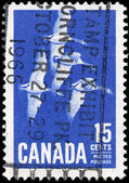 CANADA - CIRCA 1963: A stamp printed in Canada, shows Canada Gee — Stock Photo