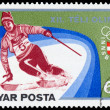 "HUNGARY - CIRCA 1975: A stamp printed in Hungary from the ""Winte — Stock Photo #40982251"
