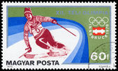 "HUNGARY - CIRCA 1975: A stamp printed in Hungary from the ""Winte — Stock Photo"