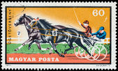 HUNGARY - CIRCA 1971: stamp printed by Hungary, shows Equestrian — Stock Photo