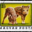 HUNGARY - CIRCA 1976: A stamp printed in Hungary shows image of — 图库照片