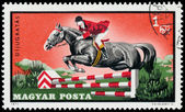 HUNGARY - CIRCA 1971: A stamp printed in Hungary shows Equestria — Stock Photo